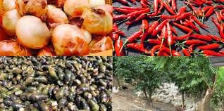 Hàn Quốc đẩy mạnh khai thác thị trường xuất khẩu thực phẩm