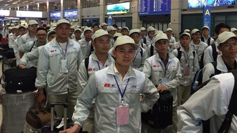 Đề xuất gói bảo hiểm Covid-19 cho lao động đi làm việc tại Hàn Quốc